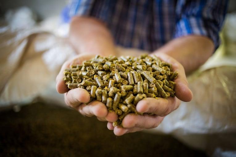 5 benefits of using a grain conveyor for handling dry bulk commodities_IMG